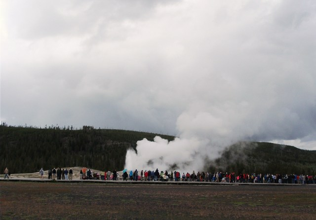 Old Faithful (4)