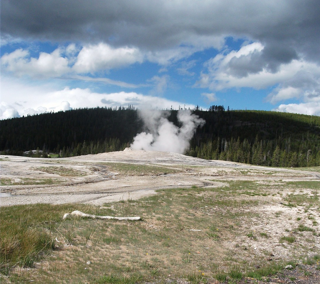 Old Faithful (6)