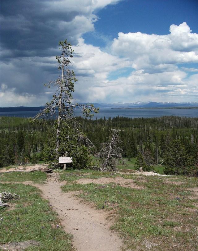 West Thumb Lake Overlook Trail (4)