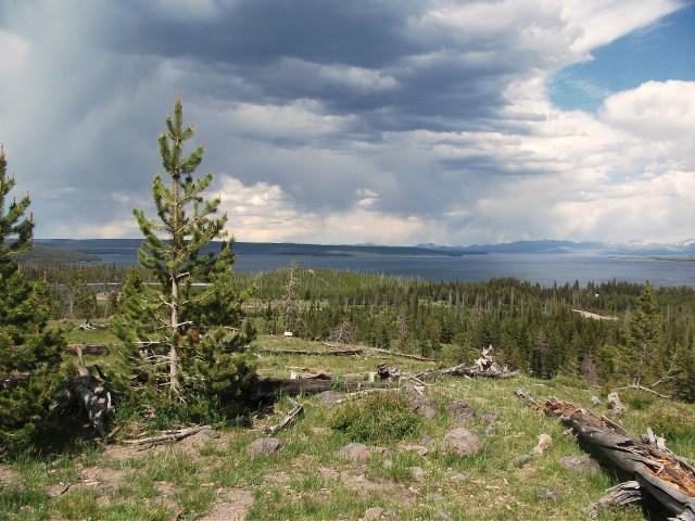 West Thumb Lake Overlook Trail (8)
