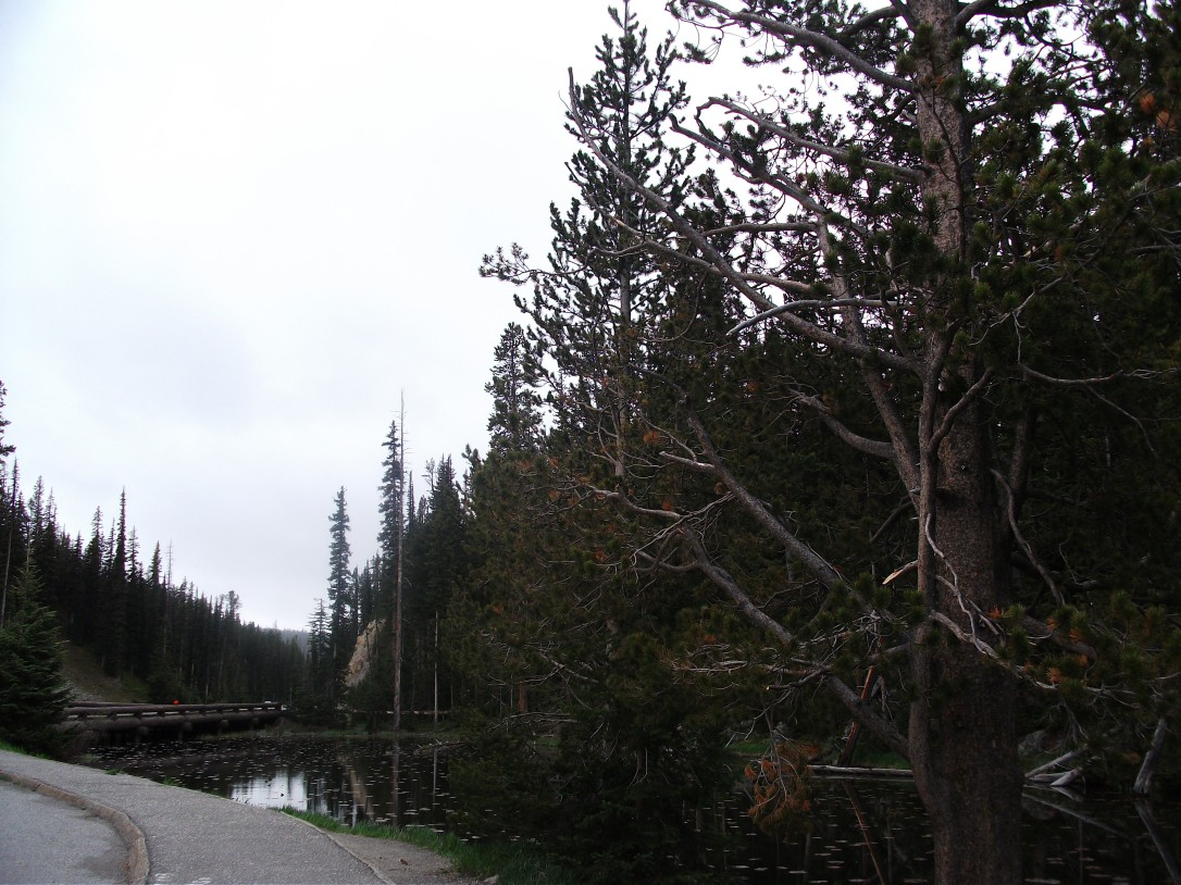 Continental Divide (5)