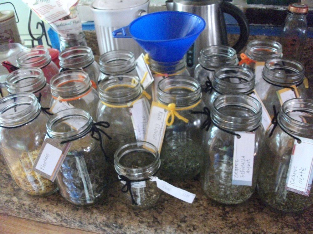 How to make herbal oil infusions & tinctures (5/6)