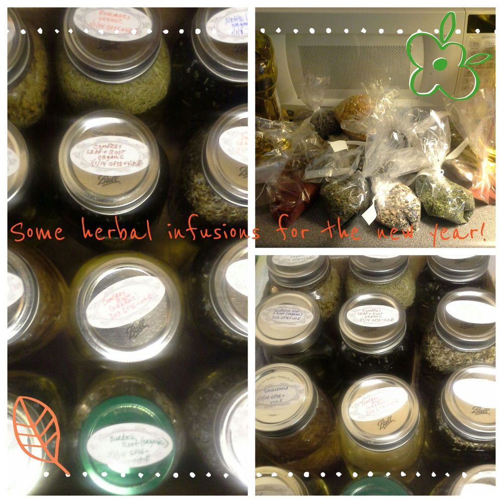 Herbal Infusion Offerings