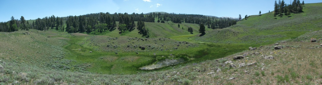 Blacktail Plateau 1