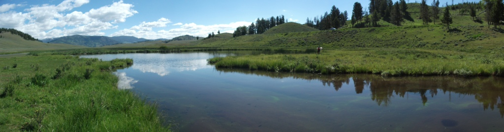Blacktail Pond 1